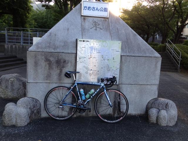 20128021